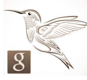 Google logo and hummingbird